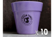 10 x Small Classic Planter - Purple