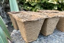 Wood Fibre Pots