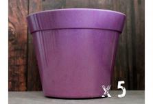 5 x Classic Plant Pot - Purple