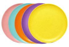 Large Plate - Rainbow Set