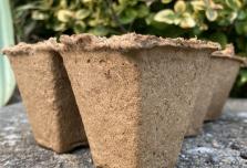 100 x Wood Fibre Pots