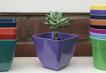Small Square Planter - Purple Image